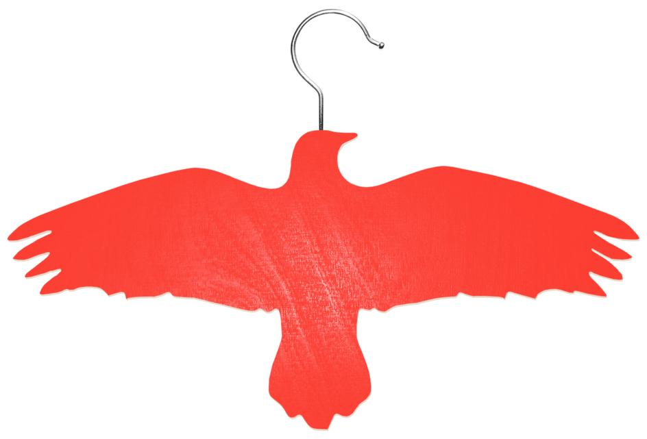 Raven - Coat hanger with a hook